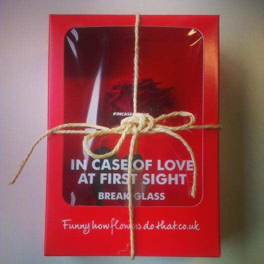 in-case-of-love-02