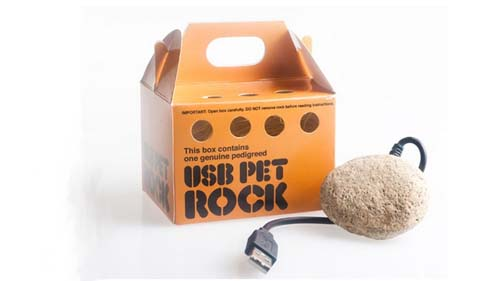 vreemde uitvindingen usb pet rock
